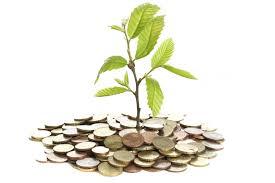 創業期の税務
